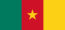 flag_of_cameroon